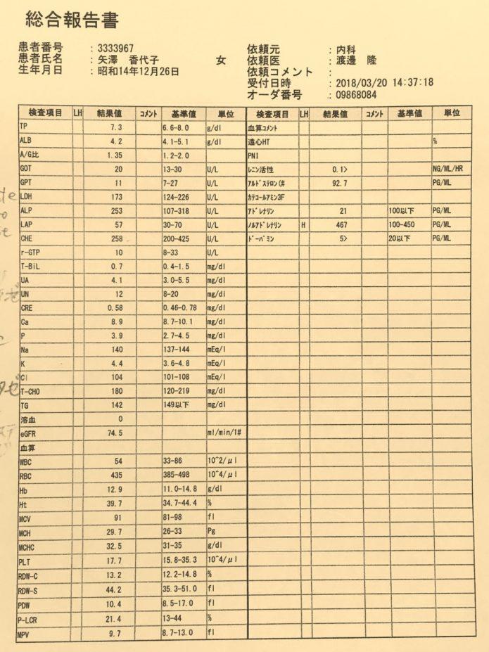 矢澤さん20422